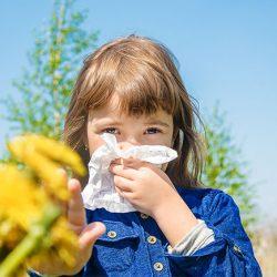 Alergia primaveral: consejos y prevención
