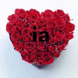 amor IA